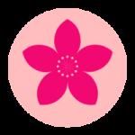 山桃资讯app