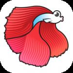 斗鱼快讯app