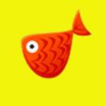 红鱼资讯app