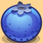 蓝莓资讯app