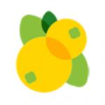 枇杷资讯app
