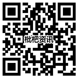 枇杷资讯app注册下载