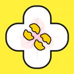 桂花网app