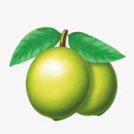 青梅资讯app