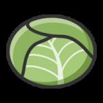 包菜资讯app