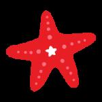 海星资讯app