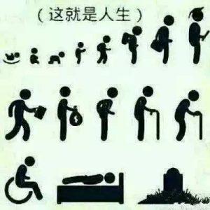 人的一生到底为了什么