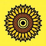 太阳花app