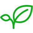 春景网app